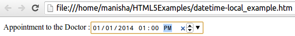 HTML5 Datetime-local Input Type