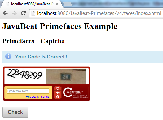 Primefaces Captcha Example 3
