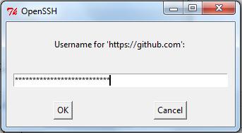 Git Username